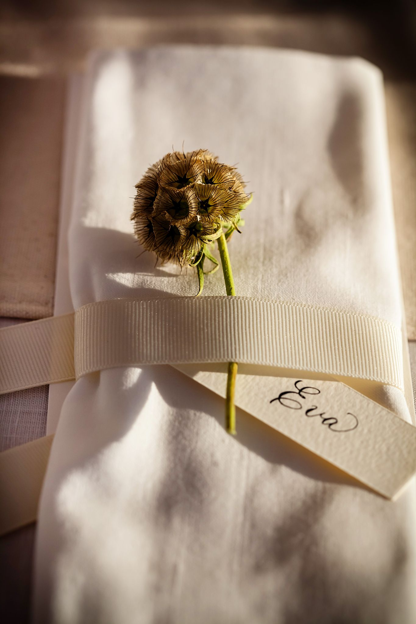 adult place setting