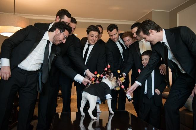 dog in tuxedo with groomsmen